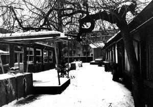 Sommarrestaurangen i vinterskrud. Finns inte kvar. 1950-talet.