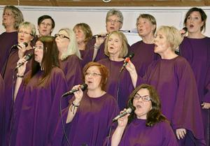 När Juniper Bay Gospel bjuder in till konsert i Envikens kyrka den 17 februari blir det såväl gospel och julsånger som musicals och rocklåtar. Kören lär också bjuda på Elvistoner och dessutom ett specialnummer i form av Metallicas