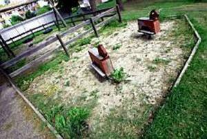 Foto: NICK BLACKMON Förfall. Det är bara gräsklippningen som hinner skötas kring kommunens och Hoforshus fastigheter i sommar.