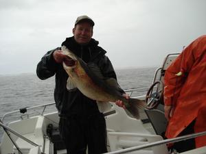 """TVÅ STORA GÖSAR. Christer Ekblad har i år fått 2 fina gösar, här är den största med en vikt på 6,888 kilo. Trots att blodvite uppstod så var det ingen större skada på fisken utan den försvann som skott ner i djupet utan att Christer behövde """"hjälpa igång den""""."""