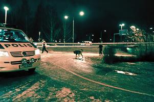 Polisen spärrade av ett område mellan Ekersvägen och Apelvägen efter skottlossningen i torsdags kväll.