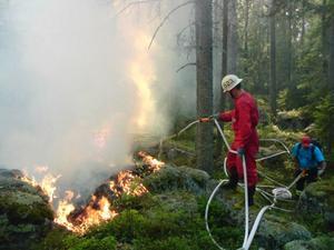 Räddningstjänsten försöker nu skära av branden som sprider sig sakta norrut.