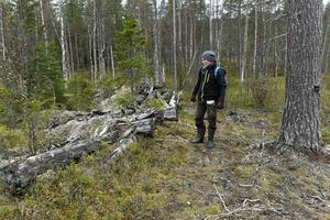 Bernt Ove Viklund vid den rasade gamla skogsarbetarstugan som återfanns strax utanför reservatsgränsen.
