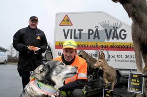 Olof Olsén i keps är eftersöksjägare och åker ut med jämthunden Mojje när viltolyckor sker i Föllinge. Kjell Tjärnås i svart informerar trafikanter om riskerna med viltolyckor å Älgskadefondsföreningens vägnar.