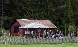 """En av många pärlor i Hemlingby är Jannes Fäbod, längst in i området. Huset med tillhörande grillplats går att boka helt gratis dagtid. Kvällstid kostar det en """"symbolisk summa""""."""