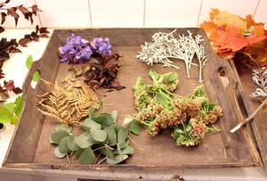 Lägg upp på bricka. Här hortensia, silverek, smällspirea, ormbunke, kärleksört och eucalyptys.