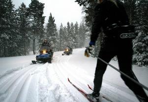 Skidspåren kommer bli bättre och bredare efter skogsarbetet på Södra berget.