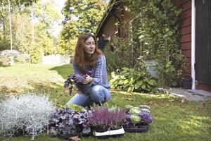 Ulrika har plockat ihop några hösttåliga växter, silvergirland, alunrot, calluna ljung och prydnadskål.