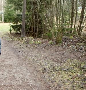 Spåret i Rönnbyskogen.