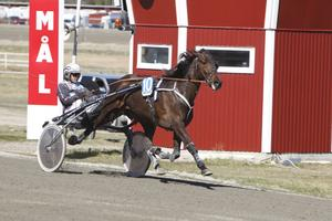 Right Of Way var ohotad etta, med Hagmyrens kuskchampion Ulf Ohlsson i sulkyn.