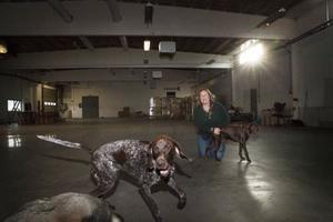 Tillsammans med hundarna Måra och Diesel, och närmast jämthunden Indra, visade Johanna Berg upp sin blivande hundhall.