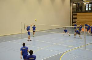 Sveriges landslag i volleyboll tränar just nu i Lindesberg.