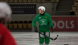 Ted Bergström är redo att ta sig an Gripen.