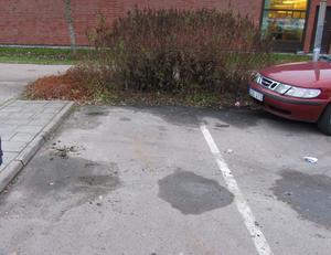 Bilen stod parkerad intill refugen.