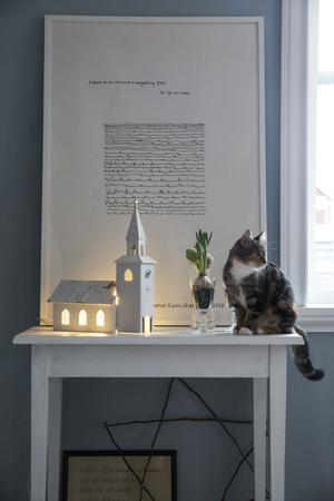 Kattungen Doris har fått namn efter makens mormor som gick bort förra sommaren. Kyrkan spelar Stilla natt, om man skruvar upp den.