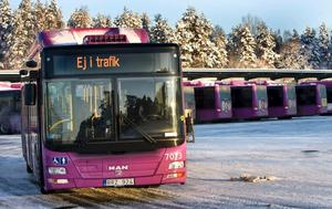 Problemen med kylan och felskyltningarna kvarstår. På tisdagen väntar biogasbussarnas nästa elddop.