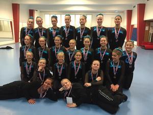 Mevalin/Gymnastikkompaniet skördade guld och brons i Järfälla Trupp Cup.