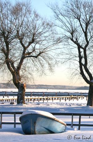 Tog med mig kameran ner till hamnen i Västerås. Det var 16 minusgrader och strålande solsken.