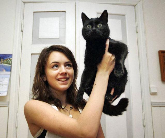 Familjens katt kom tillbaka efter tva ar