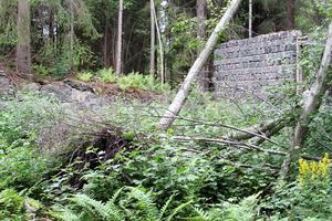 Ruinerna av Östanfors hytta i Uttersberg är igenvuxna. Skinnskattebergs kommun rensade bort lite från området för ett och ett halvt år sedan.