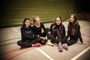 Selma Elhachimi, Agnes Tynelius, Elin Cardegren och Malin Johansson klass 9 berättar om sina upplevelser av sporthallen.Selma: