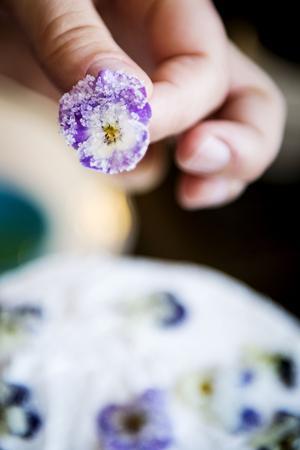 Blommorna doppas i strösocker och får sedan torka innan de läggs på tårtan.