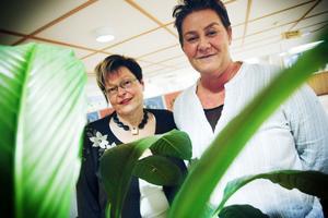 Kerstin Lindskog, projektledare, (till vänster) och Helena Brink, omsorgsnämndens ordförande, håller i trådarna för miljöprojektet inom äldreomsorgen.