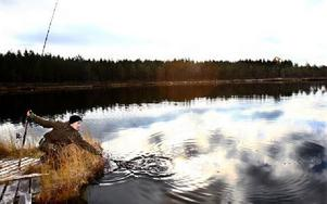 Willy Björkman, 12 år från Säter tog en delad andra plats med en sammanlagd fångst på 3 400 gram. Foto: Bons Nisse Andersson