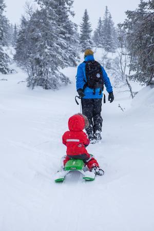 Att gå på tur med eller utan skidor hör fjällen till.