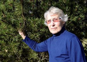 Prisad. Astrid Persson är som skogsägare ett föredöme enligt Skogsägarföreningen Mellanskog. Hon är vinnare av Skogsvårdspriset 2015.Foto: Birgitta Skoglund