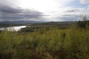 Miljökraven är viktiga vid den förnyade ansökan om gruvdrift i Bricka, Bjuråker.