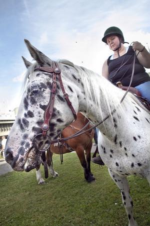 På Långnäs fick den som ville testa på att rida och ställa frågor om hästarna.