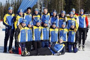 Här har ni Sveriges bästa 15- och 16-åringar på skidor. Dalarna vann som vanligt distriktskampen i Folksam Cp.