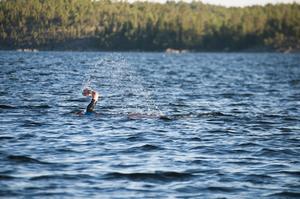 Tävlingen kommer att simmas på öppet vatten och i en insjö.