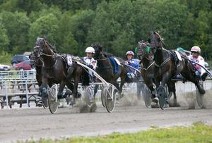 Det blir Sundbo Lava som representerar Hagmyren i Sverigeloppet på Solvalla.