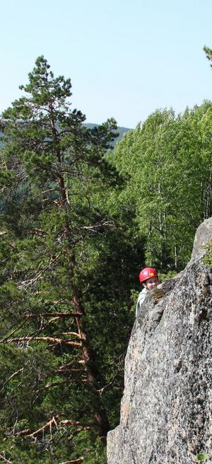 I höjd med trätopparna efter en vertikal klättring rätt upp för berget.