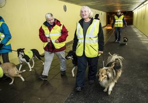 Karin Morander och Lena Engman med hundarna Odin och Semlan ger sig ut i Sundsvallsnatten.