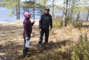 Bodil Carlsson och Erik Nisén planerar förbättringar för mosippornas situation i ett bestånd med ett trettiotal blommor.