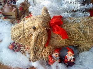Julmys hos grisarna på vår inglasade altan
