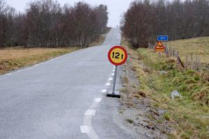 Väg 311 och väg 314 finns med i Trafikverkets upprustningsplaner under den perioden 2020-2025 Arkivbild:Åsa Evertsdotter.