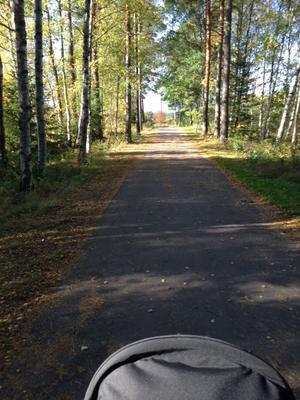Skickar en fin bild från min barnvagnspromenad förra helgen. När hösten är som vackrast!Med vänlig hälsning, Katja Cederholm
