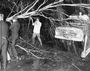 Ambulansen blev hindrad av ett nedfallet träd. Här arbetar ambulanspersonalen och några privatpersoner med att rensa vägen så att ambulansen kan ta sig fram till trafikolyckan i Strömsholm.