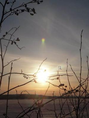 Bilden tagen under en grilltur. Vi åkte ut med kusinerna och hade riktigtkul och fick se solnedgången, vilket var hur mysigt som helst.