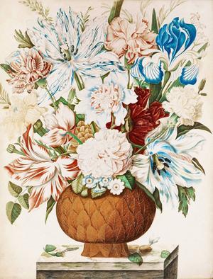 Maria Sibylla Merian, Blomsterstilleben, Gouache och akvarell på pergament, 1647-1717.
