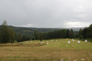 De planerade tomterna skulle ha utsikt över dalen i Häre.