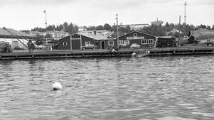 Yttre delen av hamnen med skrotverkstad 1964.