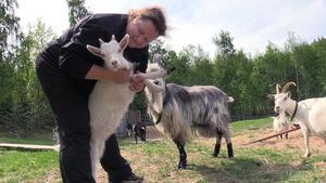 Camilla Johansson är djurskötare på Norra berget, alla djuren känner igen henne när hon kommer.