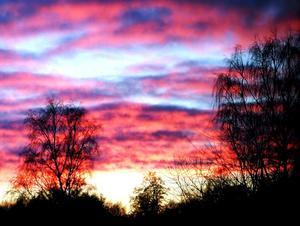 Tagen genom fönstret,Sprakande solnedgång.