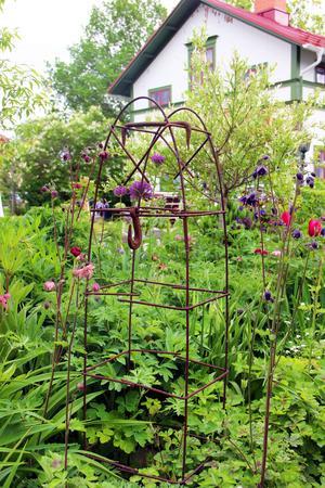 Rostiga skrotföremål från uthuset får fungera som dekorationer i den blomstrande trädgården.
