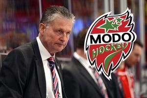 Per Bäckman berättar att han 2010 kunde ha tagit över Modo igen. Läs om det i slutet av artikeln.